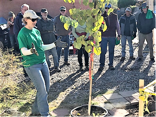 Urban & Community Forestry Program Manager Jennifer Dann celebrates at  Albuquerque NeighborWoods planting in 2018.