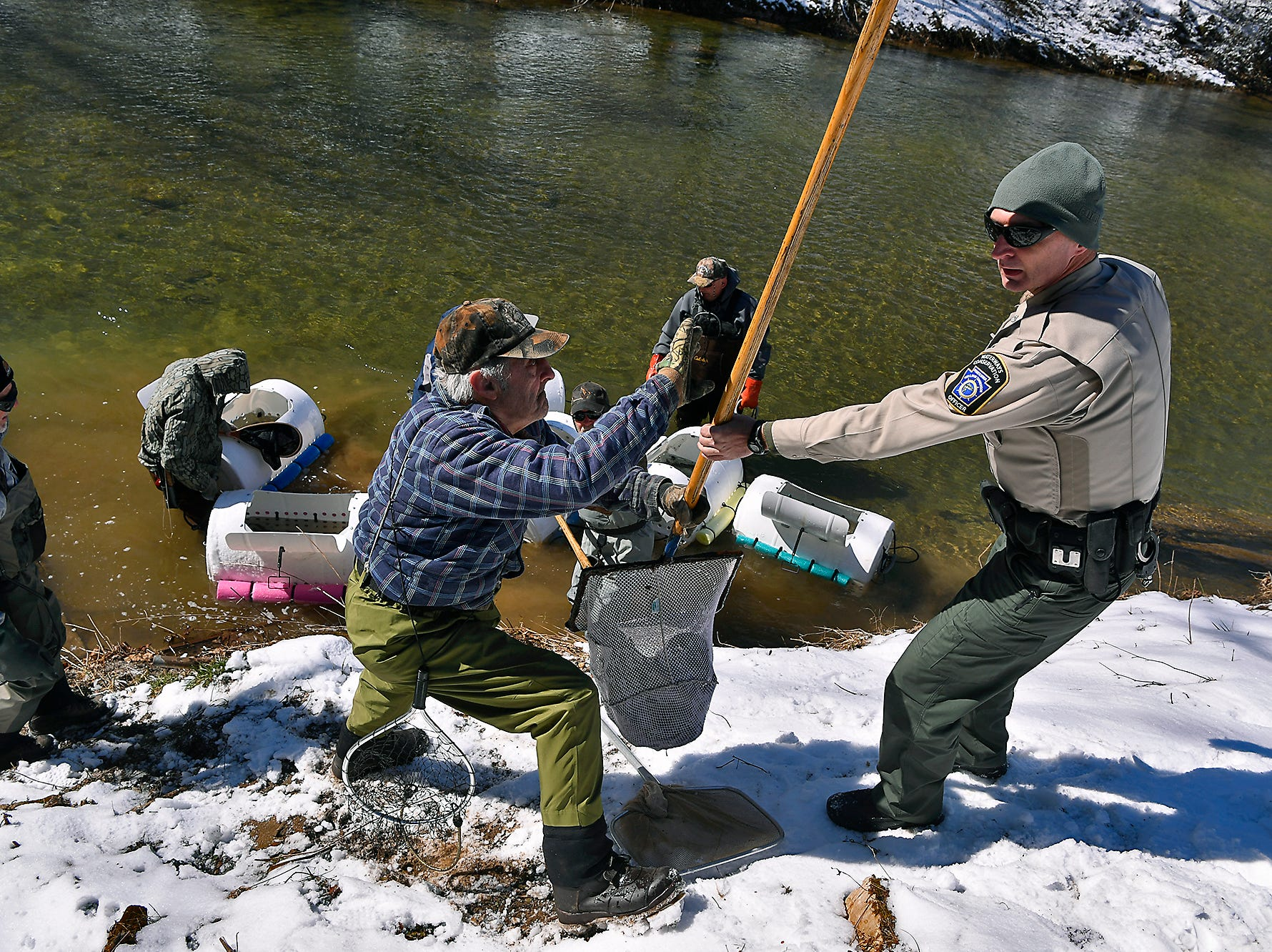 WCO Darrin Kephart of the PA Fish & Boat Commission hands a net full of brown and rainbow trout to volunteers float stocking Muddy Creek, Tuesday, March 5, 2019. The stocking was the first of several that will happen before trout season opens on March 30.John A. Pavoncello photo
