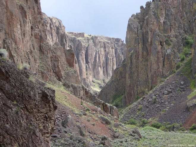 """Author Bonnie J. Olin will present """"The Owyhee River Journals"""" March 11 and 13 at Willamette University."""
