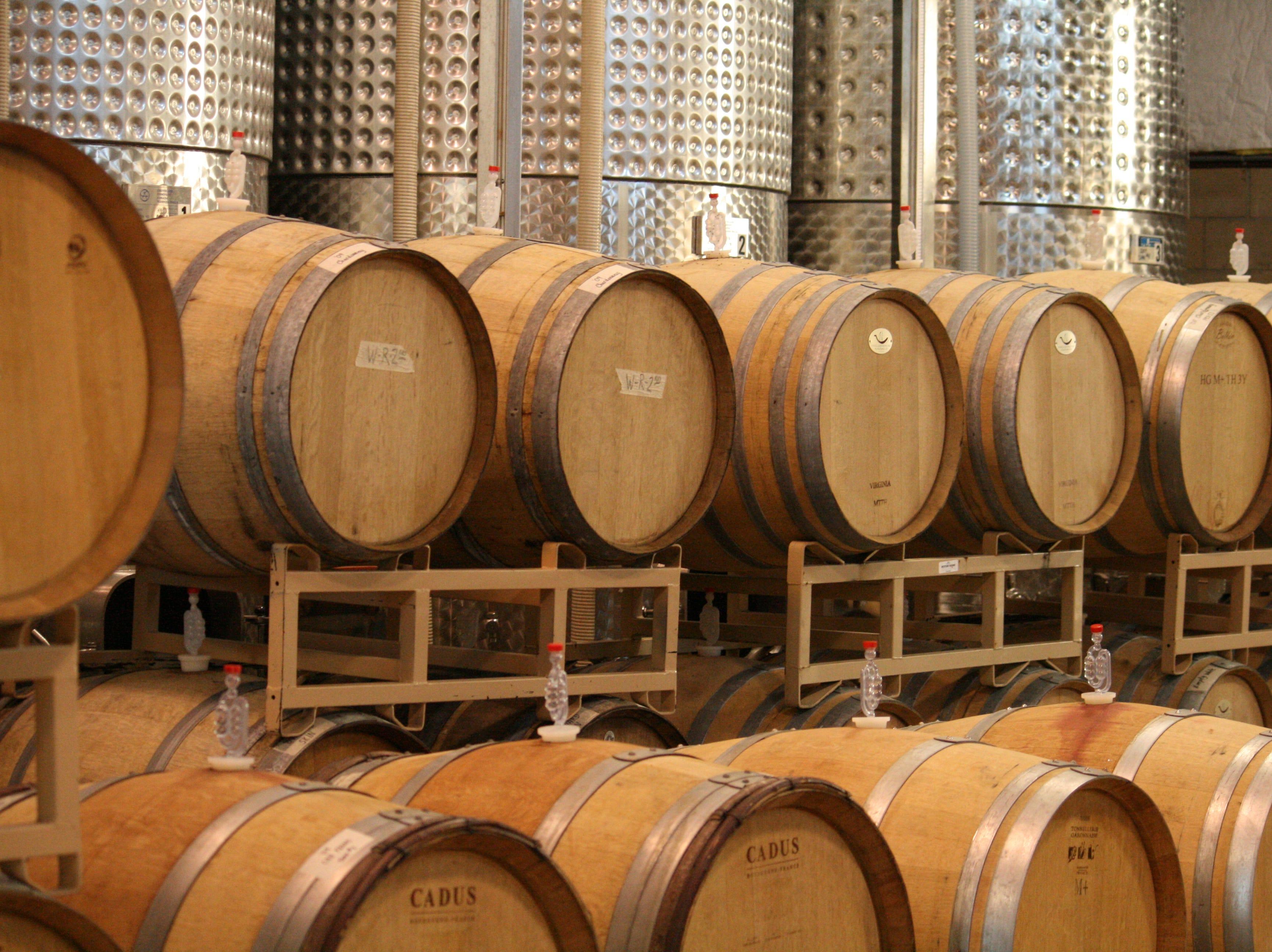 Chatham Vineyards