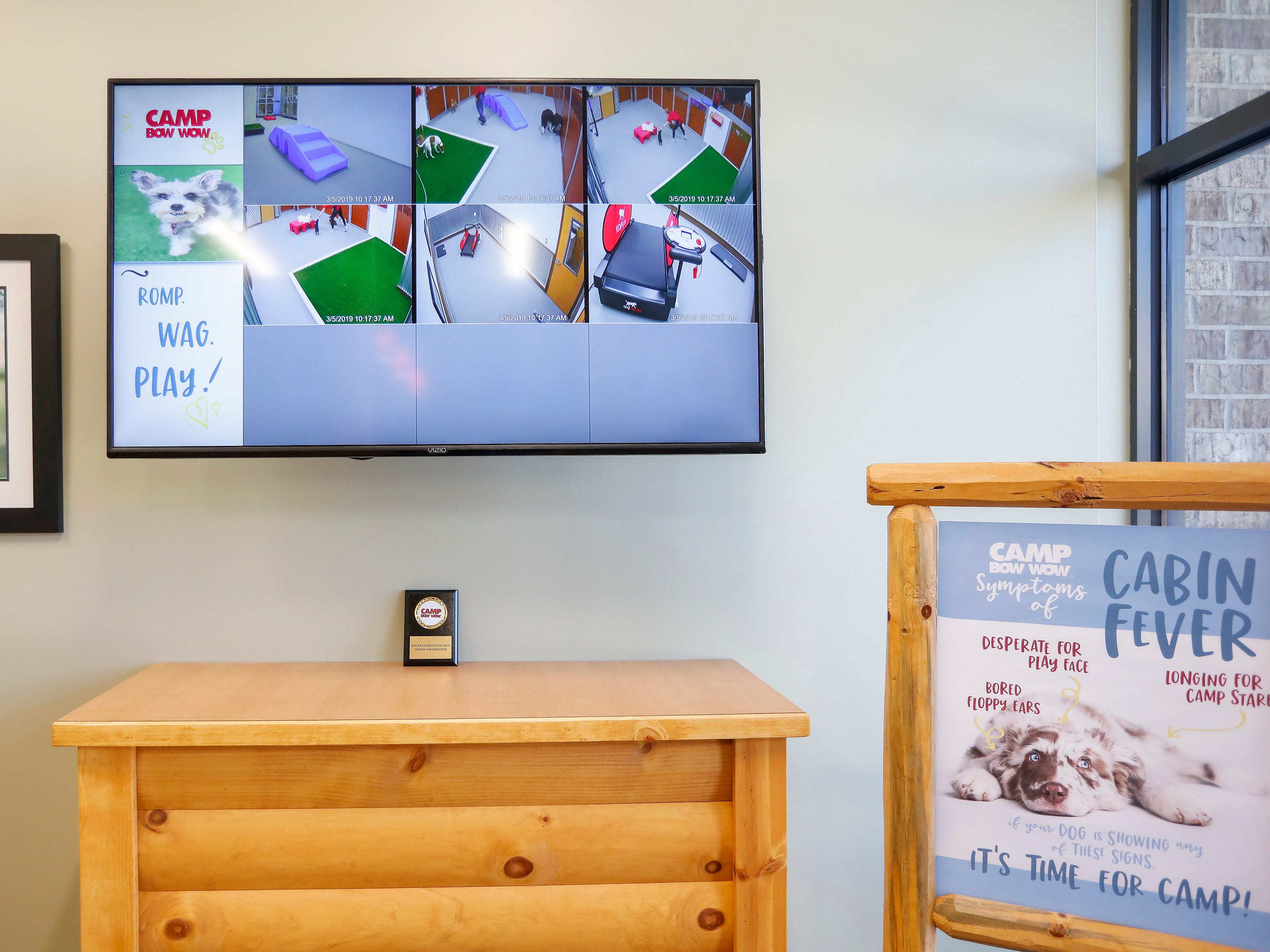 The play areas at the new Camp Bow Wow have webcams so dog owners can check in and watch their pets play and socialize with other dogs.