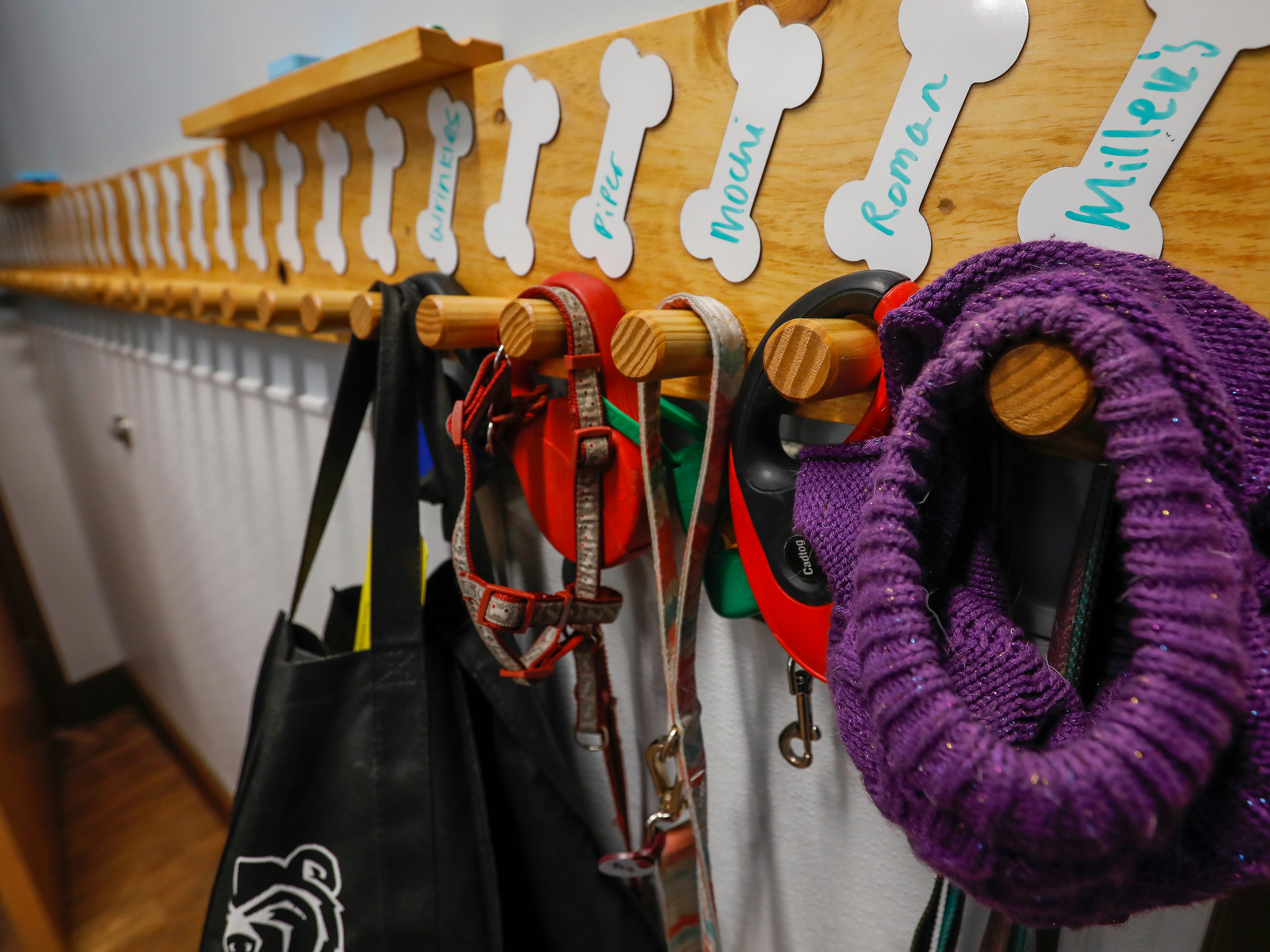 The coat rack at Camp Bow Wow holds dog's leashes, sweaters and other items.