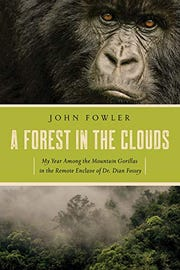"""""""A Forest in the Clouds: My Year Among the Mountain Gorillas in the Remote Enclave of Dian Fossey"""""""