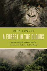 """A Forest in the Clouds: My Year Among the Mountain Gorillas in the Remote Enclave of Dian Fossey"""