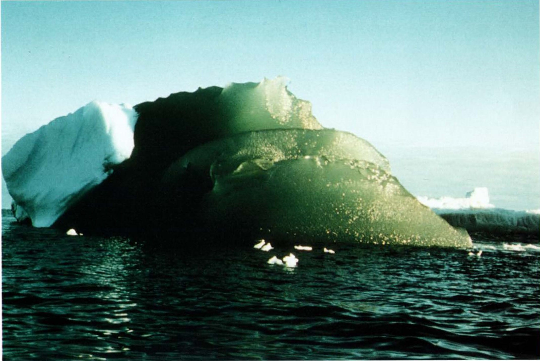 These Antarctic icebergs are green, and scientists may know why