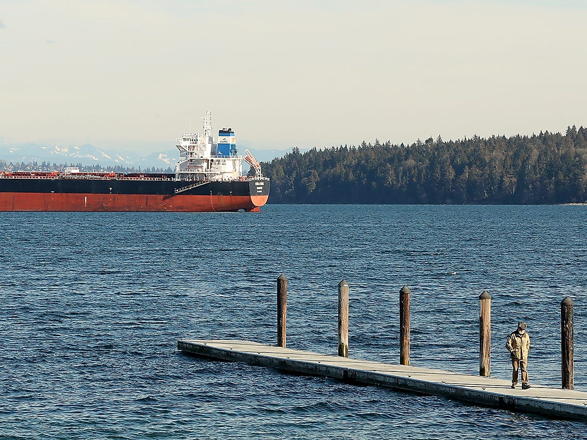 A large cargo ship looms in the distance as Manchester resident Leon (who chose not to give his last name) walks along one of the docks at Pomeroy Park in Manchester on Tuesday, March 5, 2019.