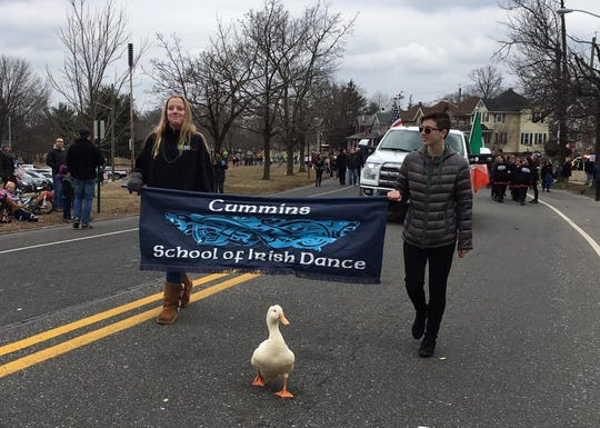 A duck is the real MVP of the Gloucester City St. Patrick's Parade. It entered the parade route and walked with various groups for blocks. The city can't stop squawking about it.