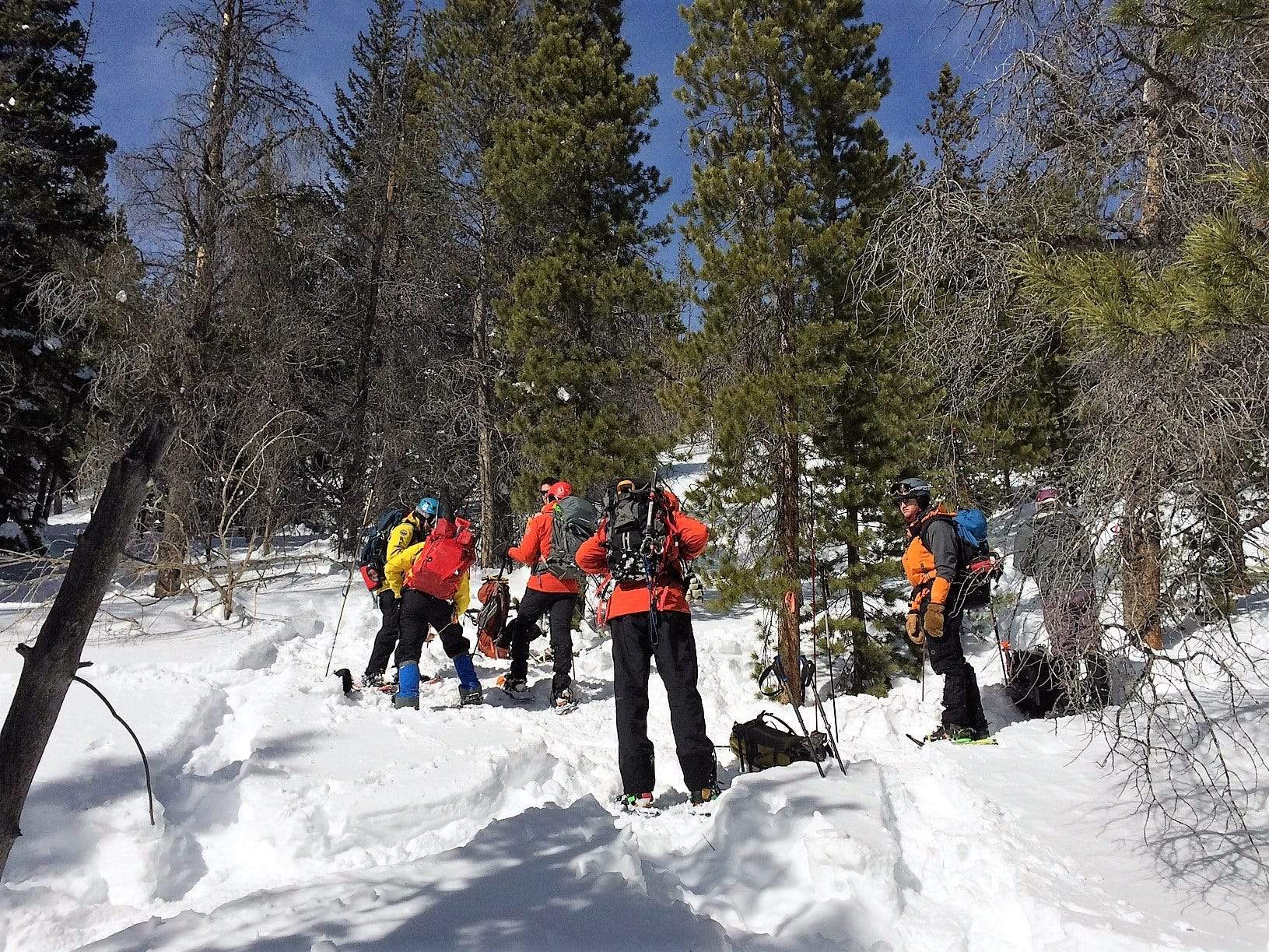 A crew searches Tuesday for Jame Pruitt, 70, of Entowah, Tennessee, who is missing in Rocky Mountain National Park.