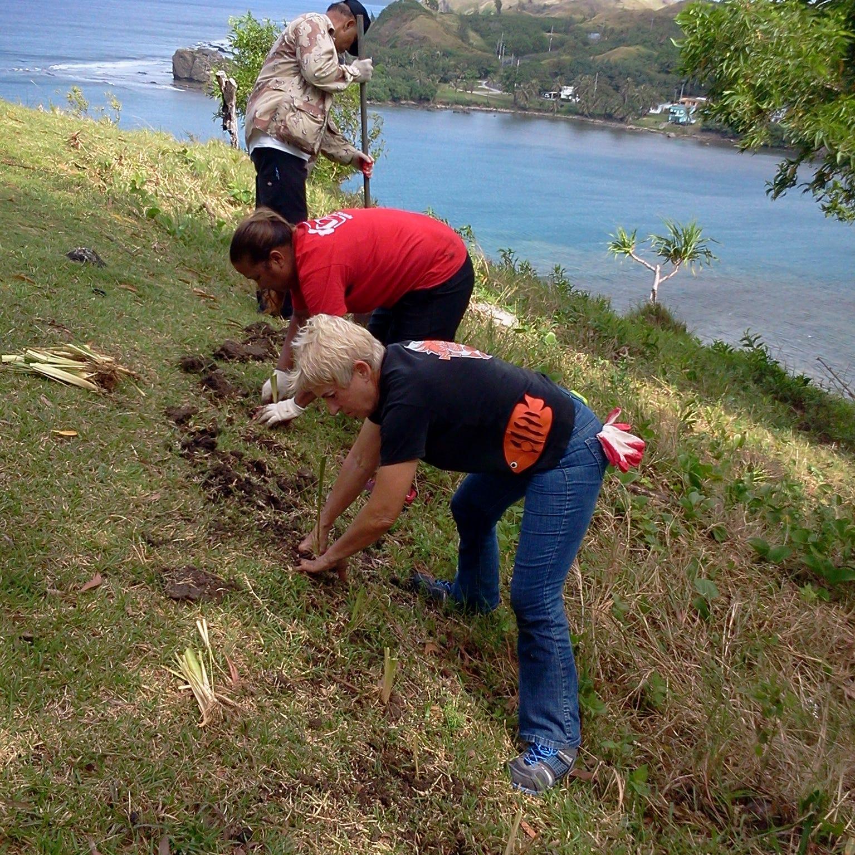 Letter: Vetiver hedgerows help prevent erosion
