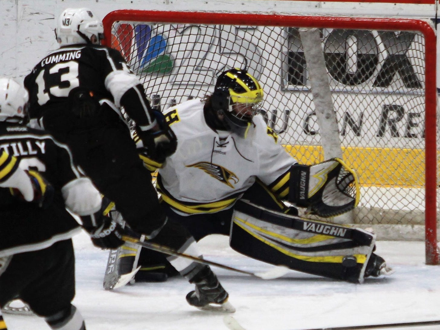 Hartland goalie Brett Tome makes one of his 15 saves on Cure Cumming of Forest Hills Eastern in a 6-0 state quarterfinal hockey victory on Tuesday, March 5, 2019.
