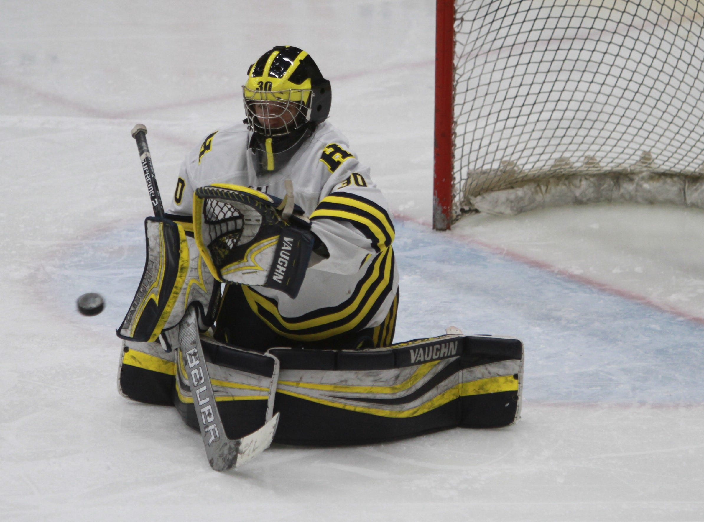 Hartland goalie Brett Tome prepares to catch a shot during a 6-0 victory over Forest Hills Eastern in the state Division 2 hockey quarterfinals in Flint on Tuesday, March 5, 2019.