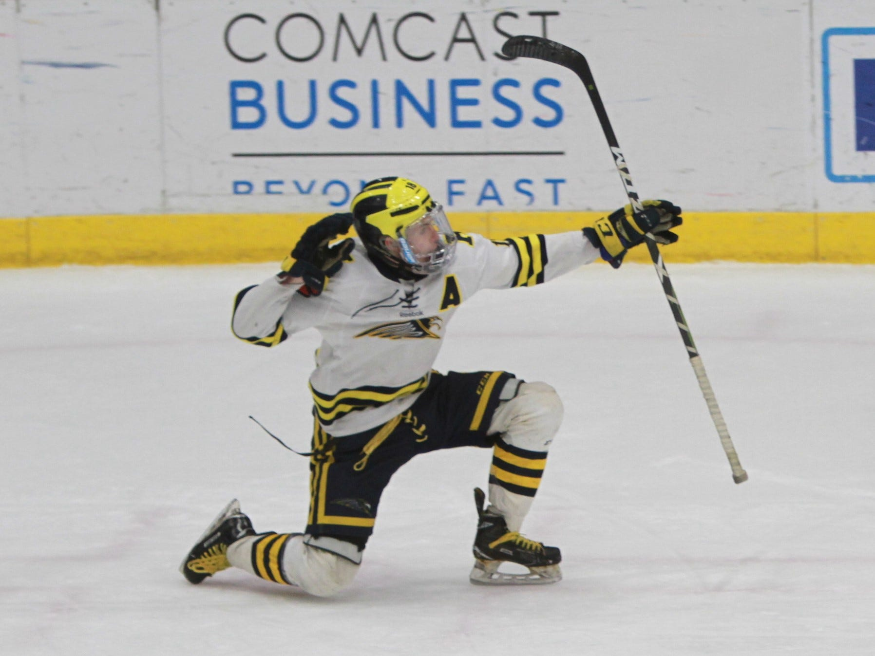 Brenden Tulpa celebrates after scoring the first goal in Hartland's 6-0 victory over Forest Hills Eastern in the state hockey quarterfinals on Tuesday, March 5, 2019.