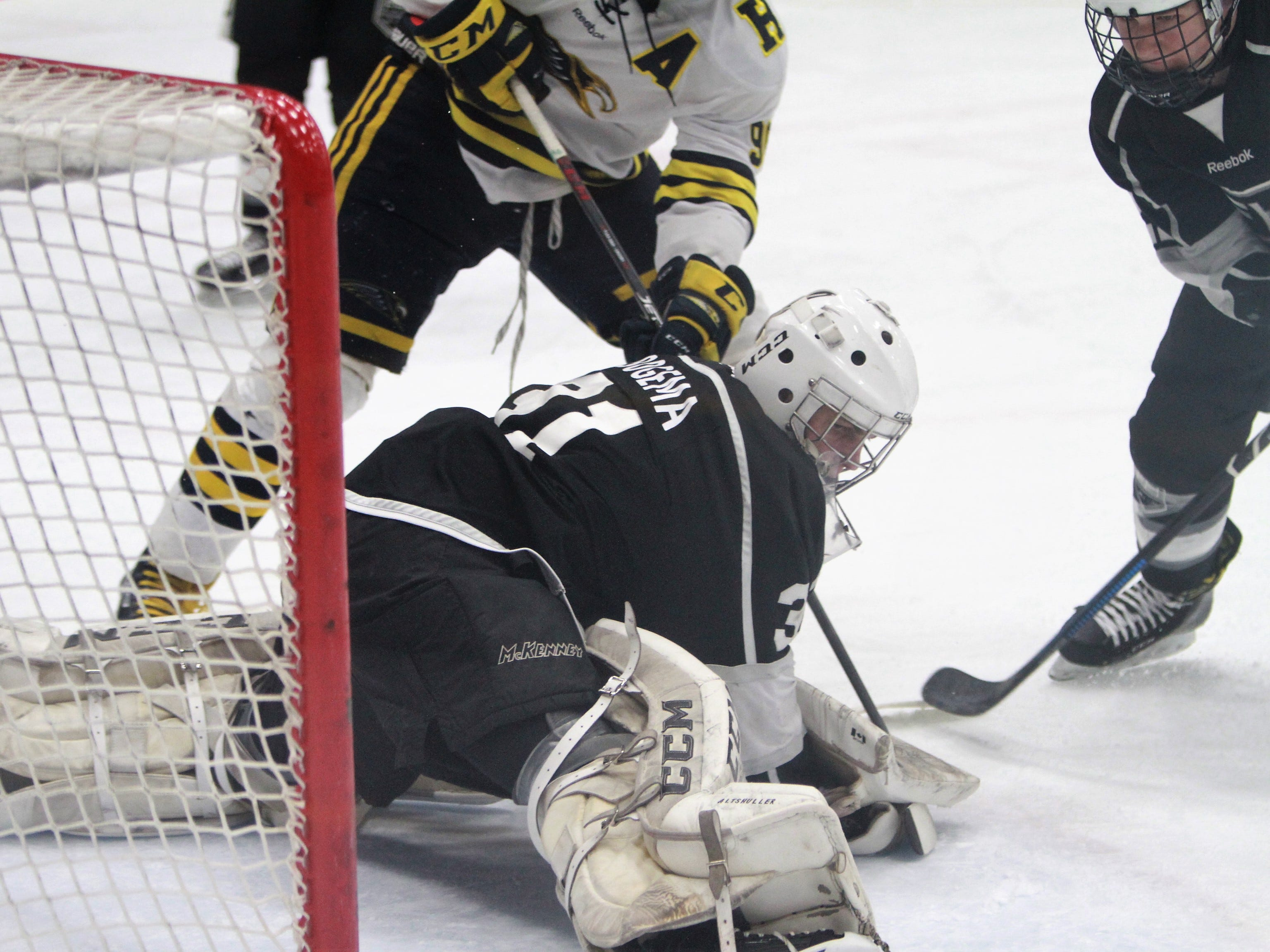 Forest Hills Eastern goalie Brenden Bogema makes a save during a 6-0 loss to Hartland in the state Division 2 hockey quarterfinals in Flint on Tuesday, March 5, 2019.