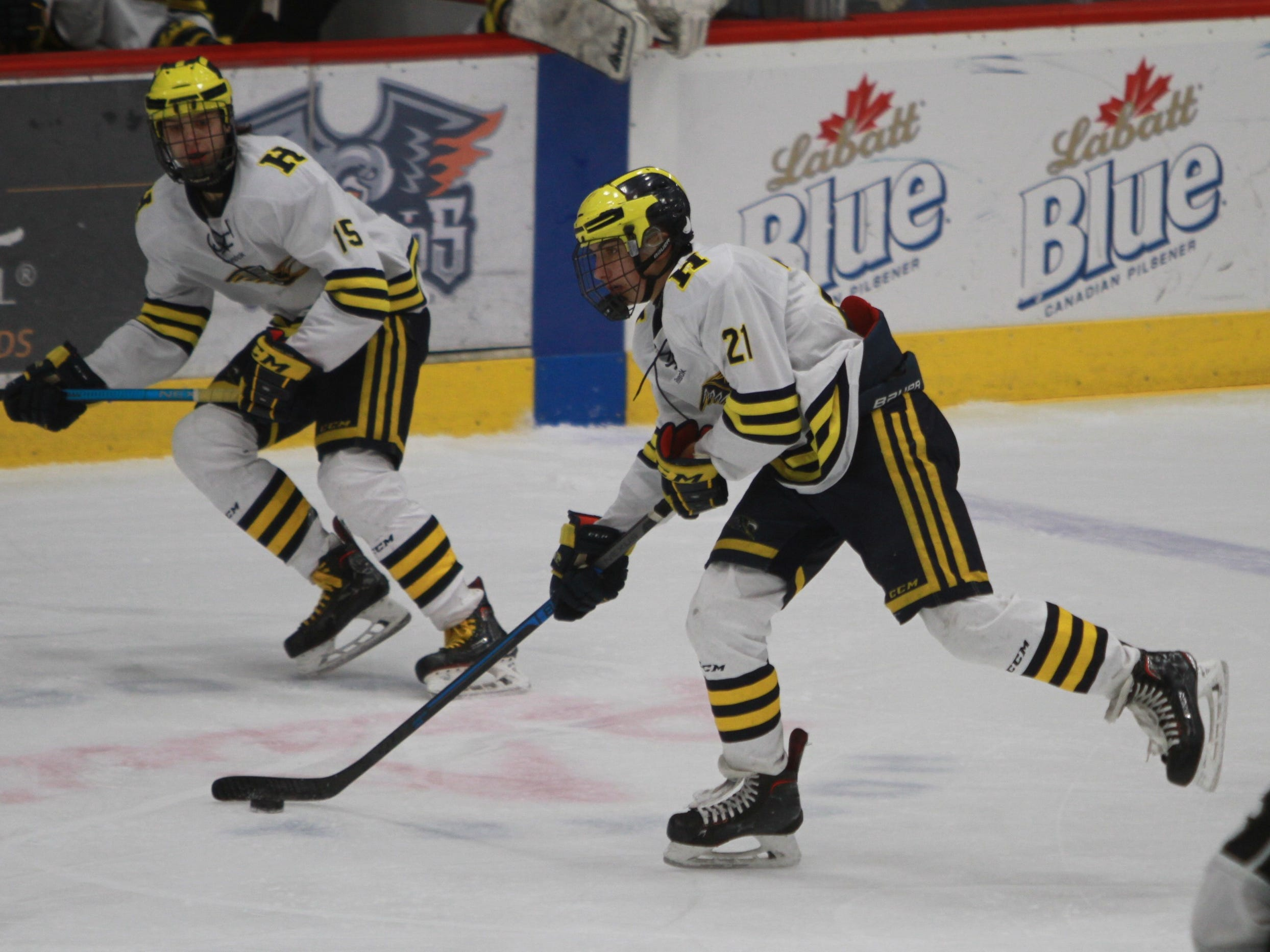 Hartland's Trent Krause (21), who scored the game's second goal, carries the puck up the ice while flanked by John Druskinis (15) during a 6-0 victory over Forest Hills Eastern in the state Division 2 hockey quarterfinals in Flint on Tuesday, March 5, 2019.