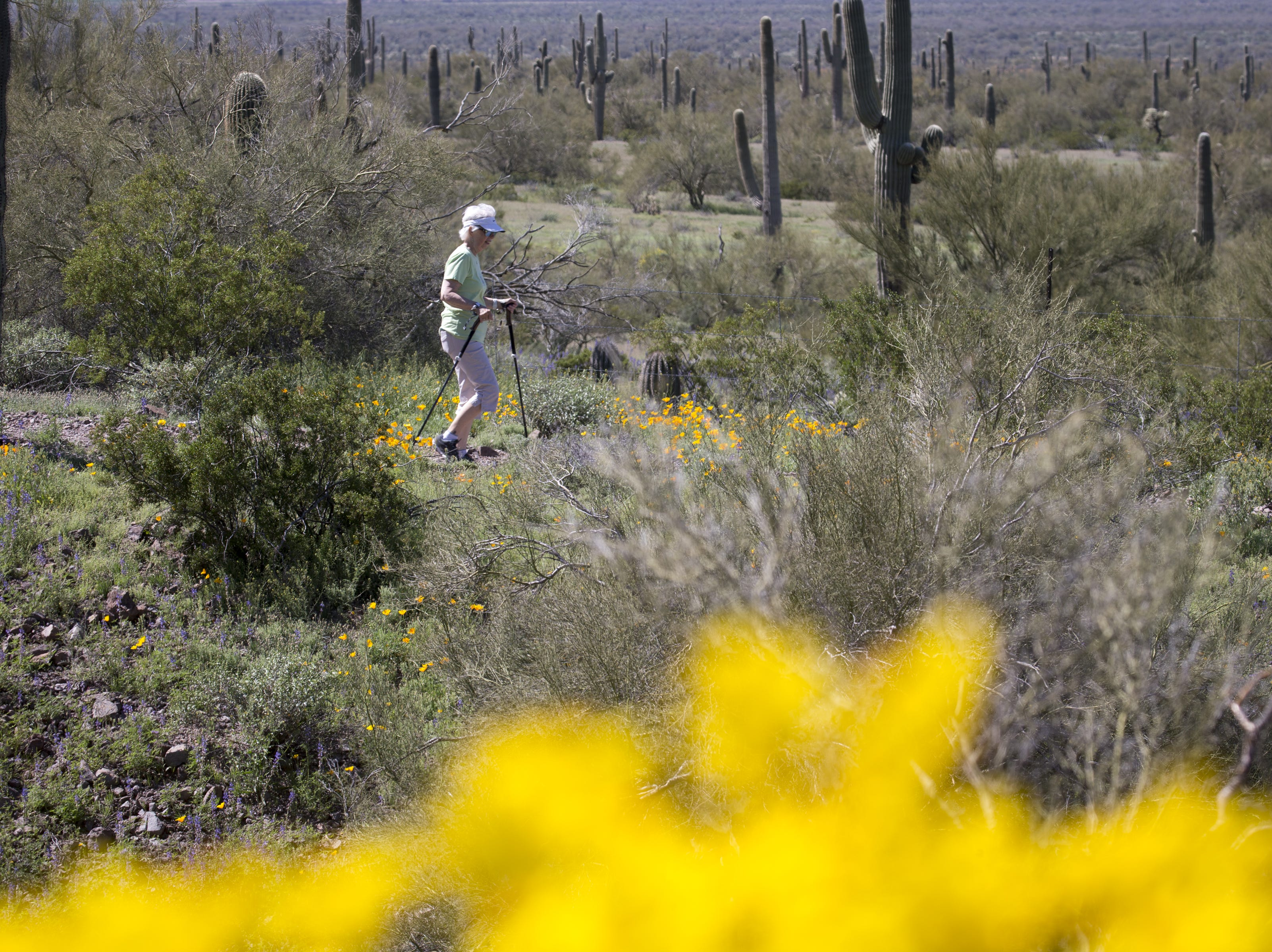 A visitor hikes on the Sunset Vista Trail, March 5, 2019, at Picacho Peak State Park, Arizona.