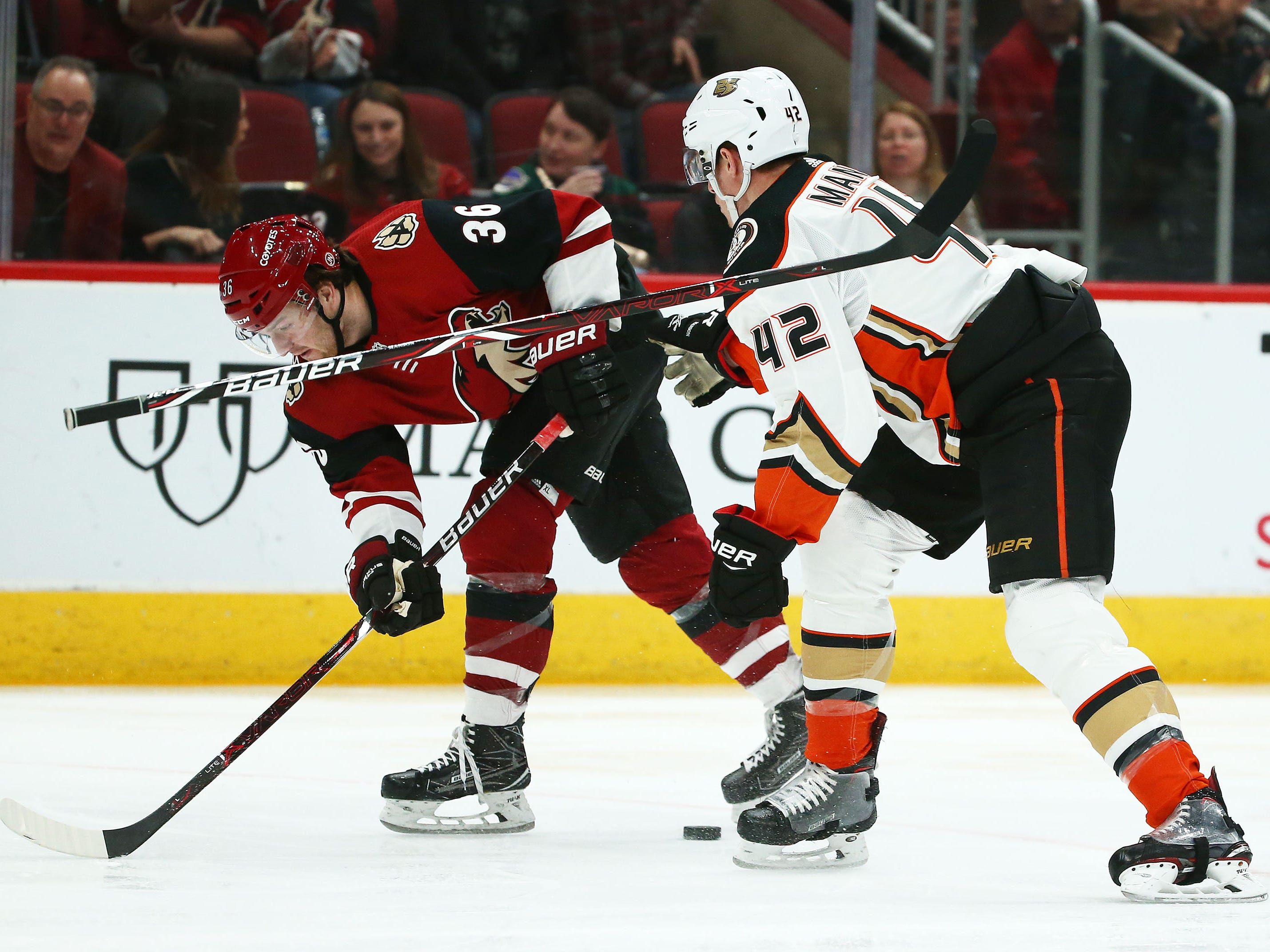 Anaheim Ducks defenseman Josh Manson (42) looses his stick against Arizona Coyotes right wing Christian Fischer (36) in the second period on Mar. 5, 2019, at Gila River Arena in Glendale, Ariz.