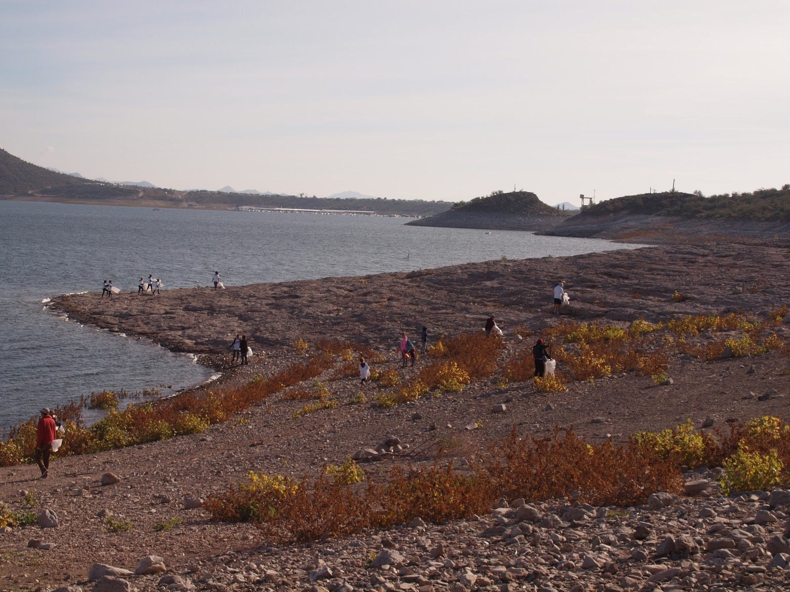 Volunteers scatter along the shoreline of Lake Pleasant near the lake's boat dock for Keep Nature Wild's Impact Friday cleanup on Nov. 23, 2018.
