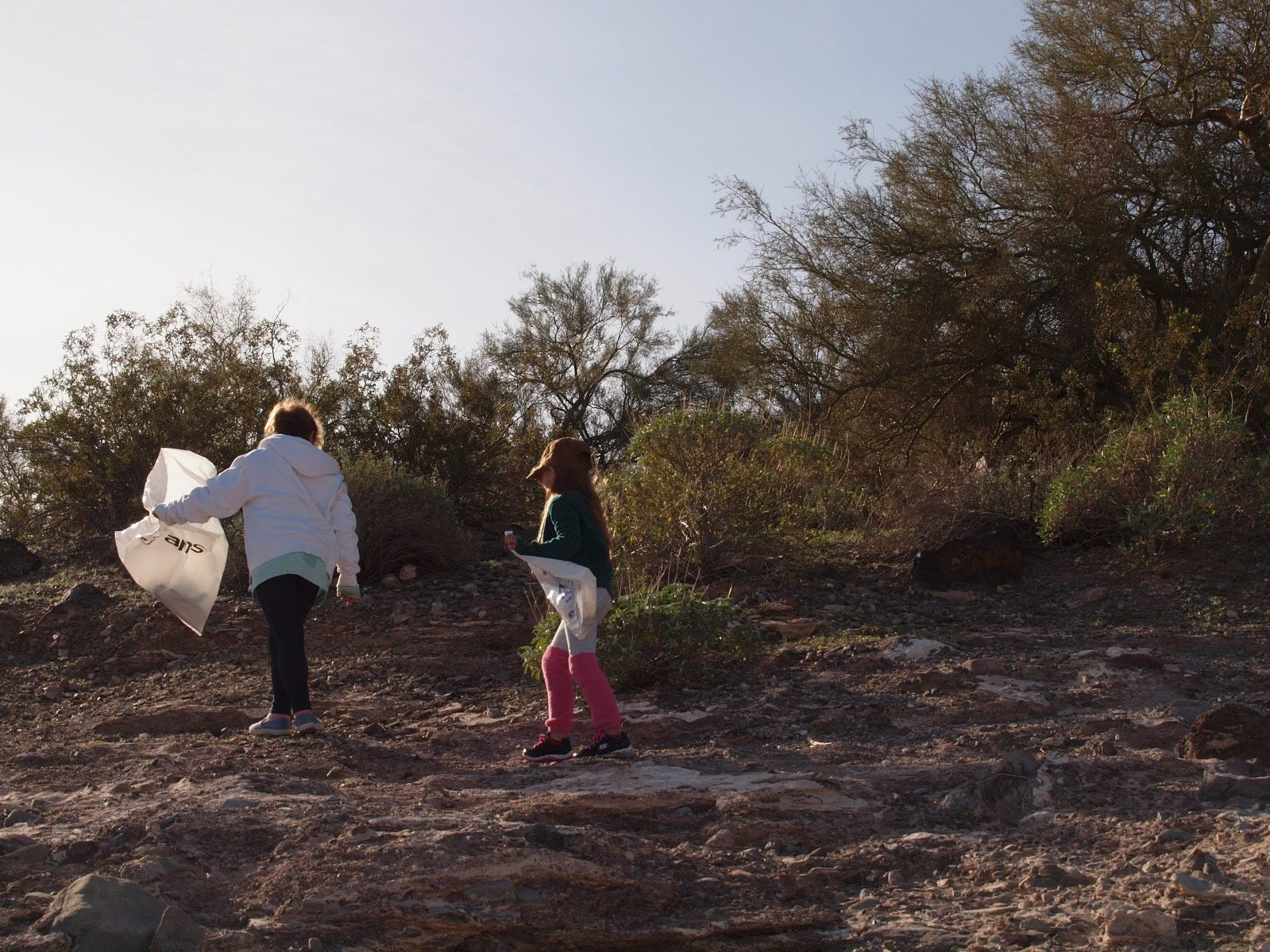 Children on the shoreline of Lake Pleasant searching for trash at a Keep Nature Wild cleanup on Nov. 23, 2018.