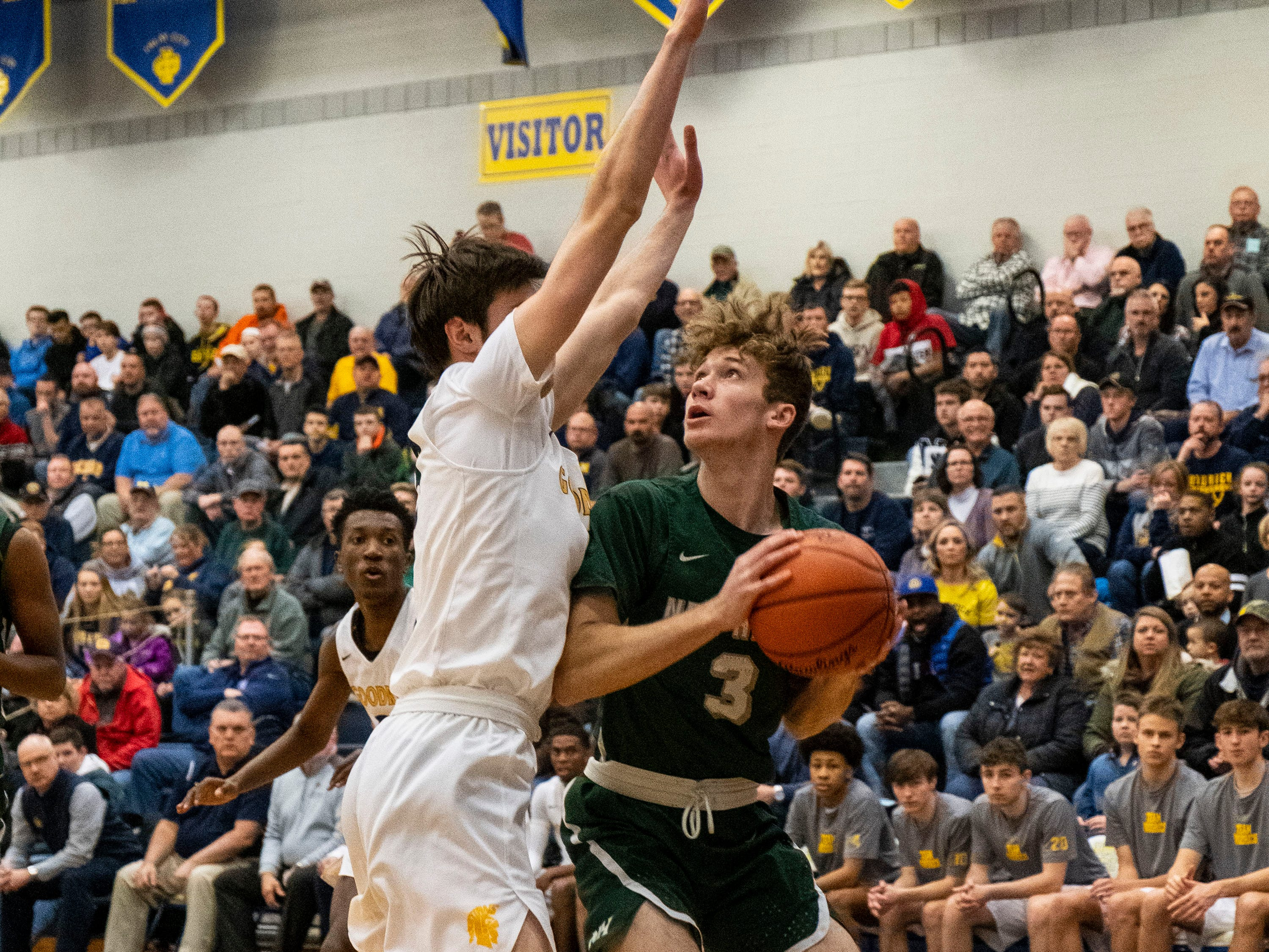 Goodrich HIgh School's Mason Vitale (left) defends against New Haven's Brent Wiles in the MHSAA District 2 basketball regionals Tuesday, March 5, 2019 at Imlay City High School.