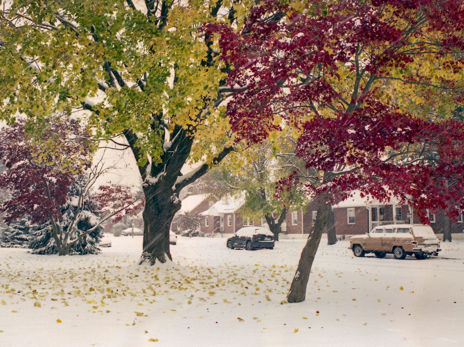 Nate Gentzler eventually hopes to print photos at his own home as well, but for now he will continue to shoot as much as he can whenever he can.  This is a photo embodying the clash of the seasons. [Pentax K] [Kodak Ektar 100]