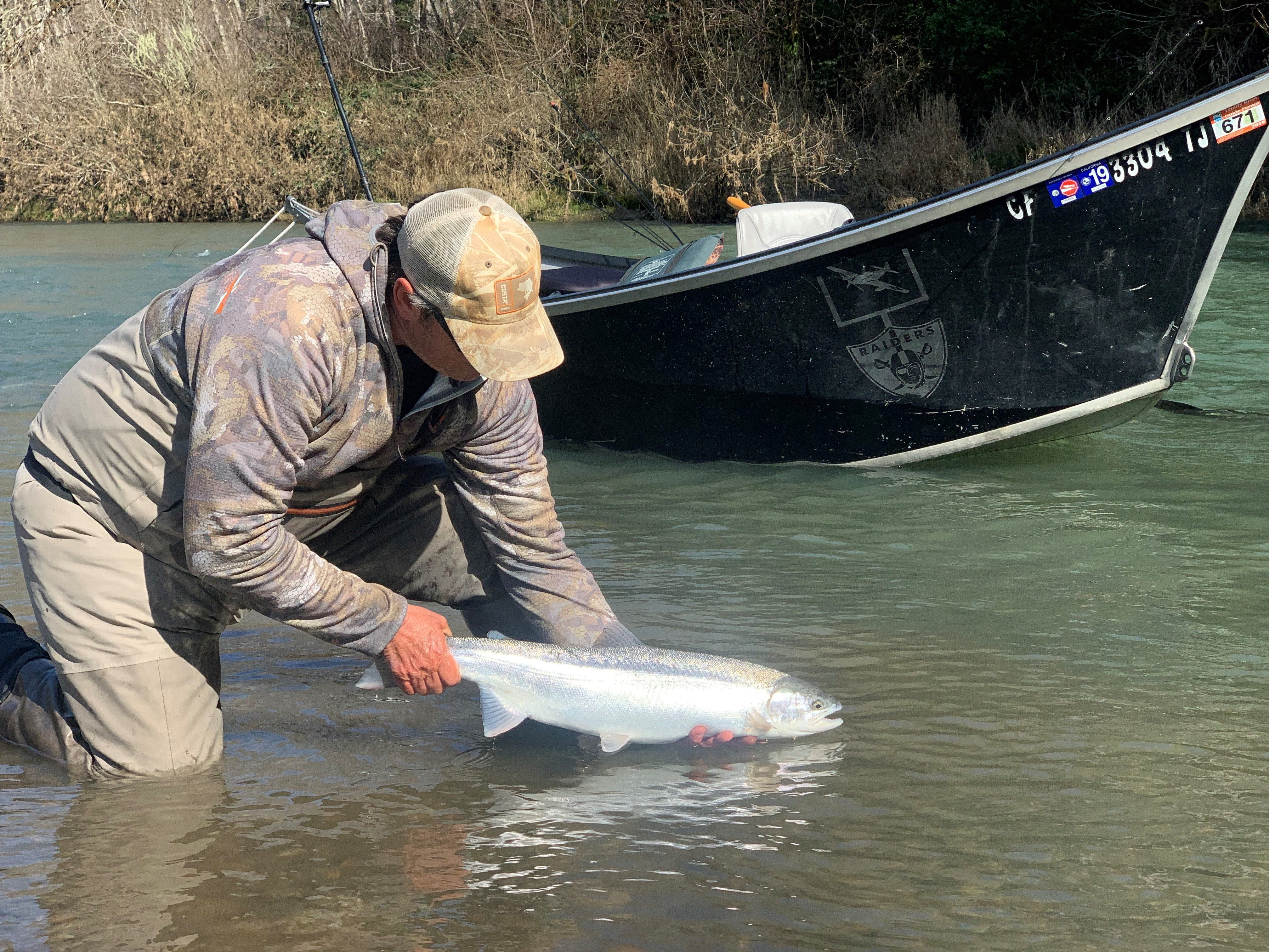 Dave Jacobs of Professional Guide Service holds a wild dime-bright steelhead caught and released on one of southern Oregon's top steelhead rivers on March 4, 2019.