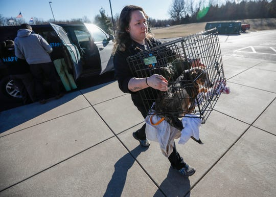 Marys Ford, a lead kennel tech with the Humane Society of Southwest Missouri, carries a crate with two rescue dogs into the building for intake on Tuesday, March 5, 2019.