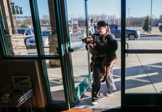 Liz Villameyers, enrichment coordinator with the Humane Society of Southwest Missouri, carries a rescue dog into the building for intake on Tuesday, March 5, 2019.