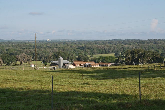 Florida A&M University and Duke Energy are working toward an agreement on the utility leasing up to 800 acres at FAMU's research center in Brooksville.