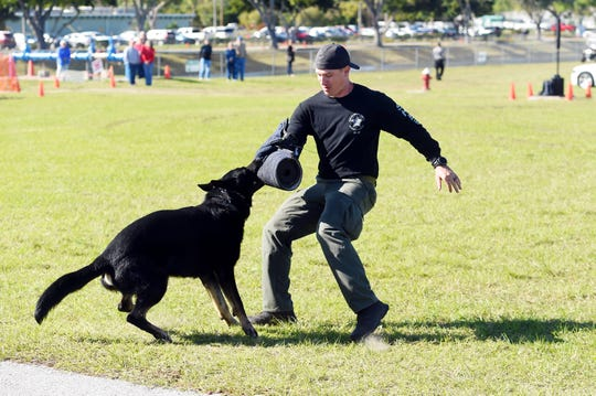 A police K-9 at a public demonstration  in Indian River County.