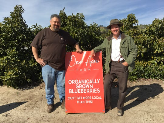 Dan Vigna, left, and Scott Bahler met at church before partnering to open One Acre Farm on land leased from Bahler's in-laws. The U-pick organic blueberry farm is located on Gerry Ranch in the Santa Rosa Valley.