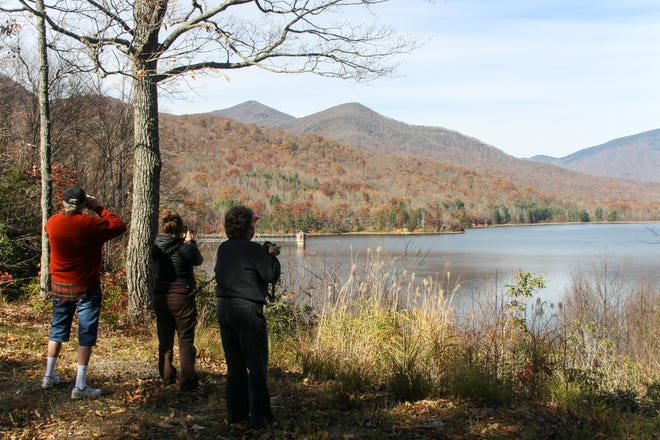 A March 30 tour, hosted by the Swannanoa Valley Museum & History Center, offers an opportunity to access the Asheville Watershed and see what remains of the thriving community that used to exist within it.