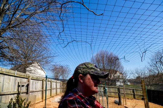 Shawna Lund watches over her flock that is kept in a fenced area covered in netting at Lund's home in Clarksville, Tenn., on Wednesday, March 6, 2019.