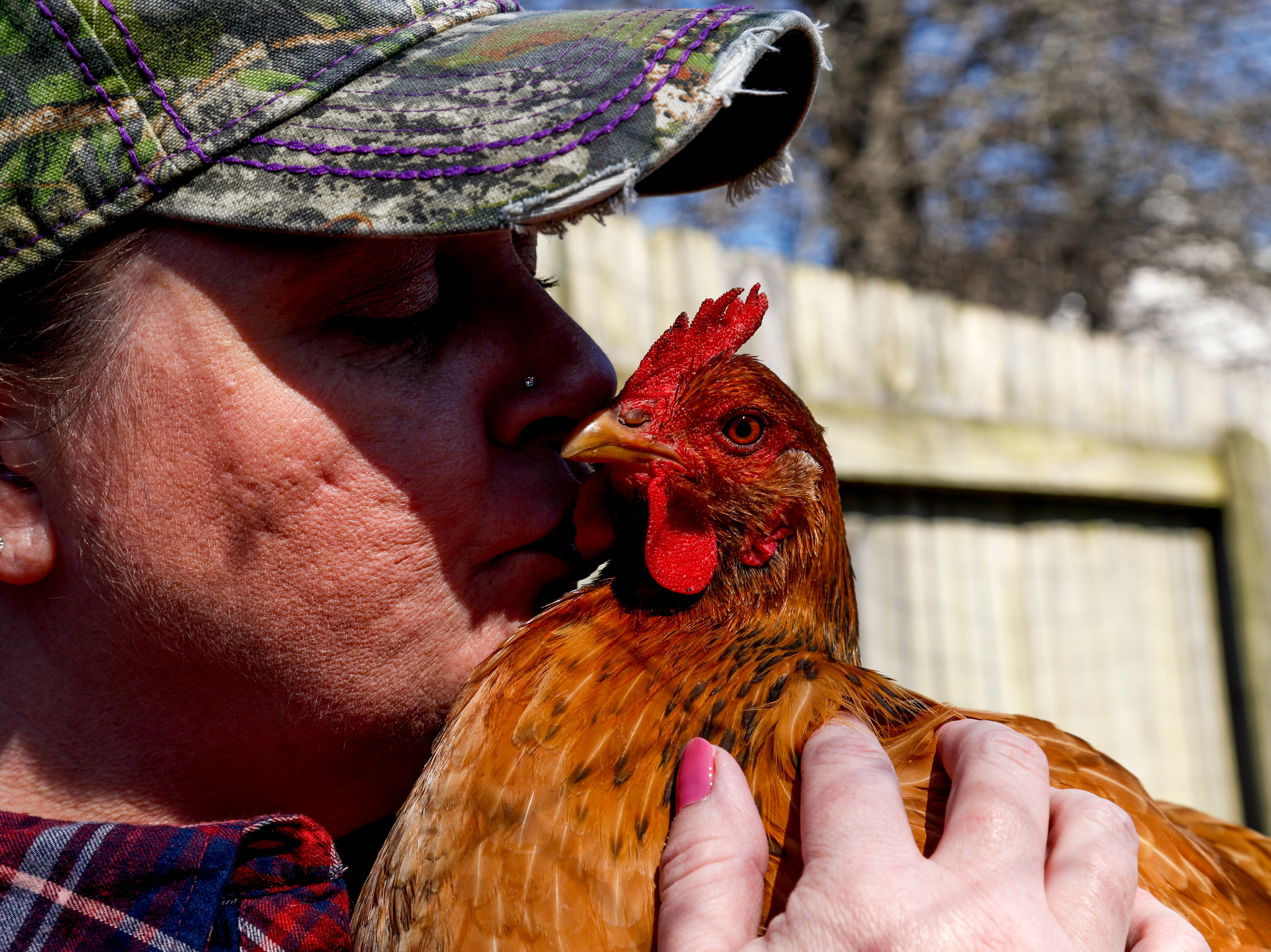 Shawna Lund kisses one of her oldest hens while visiting her flock she keeps in a fenced area in her backyard at Lund's home in Clarksville, Tenn., on Wednesday, March 6, 2019.