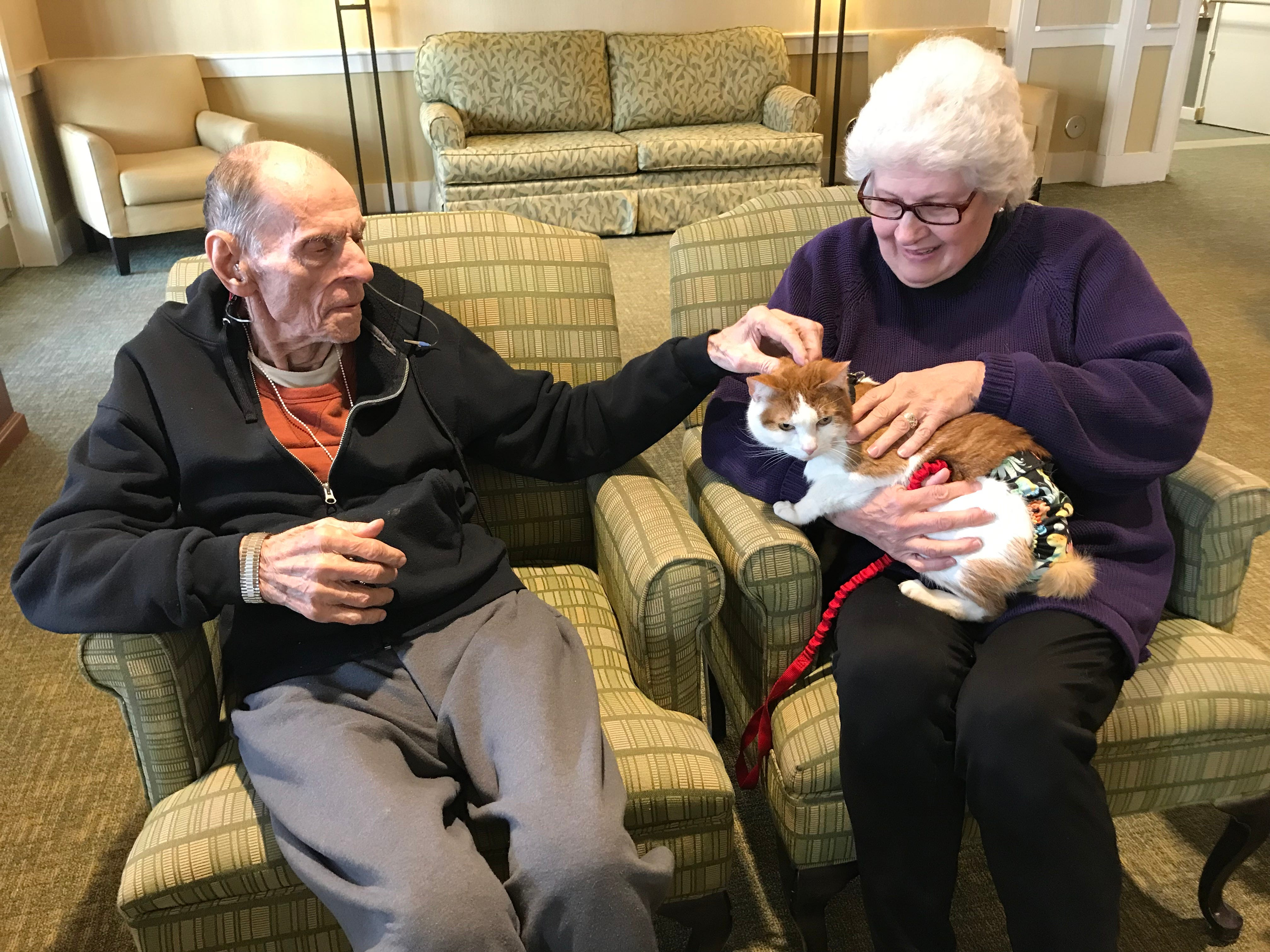 """Tabby's Place volunteer Susan Toth holds four-year-old Carrot as Bob Yockman pets the cat. A frequent guest to Independence Manor in Flemington and a few other local nursing homes, Carrot belongs to a special traveling troupe of cats — all a part of """"Aged to Purrfection,""""a new pet therapy program from Tabby's Place, a cat sanctuary in Flemington."""