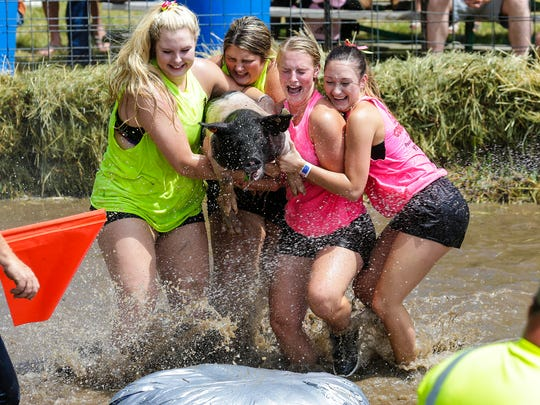 Teams of four people compete to get a pig on a barrel in the middle of a muddy water filled pen Saturday July 14, 2018, at the Eldorado Community Picnic. The team with the shortest time wins.