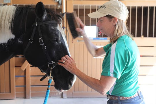 Trainer Robin Heroth grooms Tacoma at Naples Therapeutic Riding Center, where she helps students learn to overcome physical and emotional obstacles. The bond between horse and human begins with grooming.