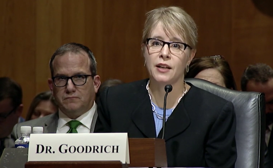 Dr. Kate Goodrich discusses nursing home regulations to a Senate committee.