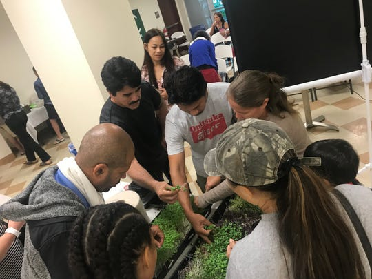 Village Micro-Farm owner Dave Crisostomo showed participants how to plant and harvest microgreens at a workshop at the Guam Museum.