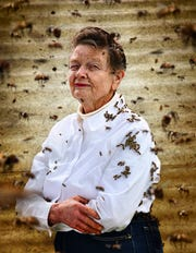 """Beekeeper photo from """"American Farmer"""" at Collier County Museum"""