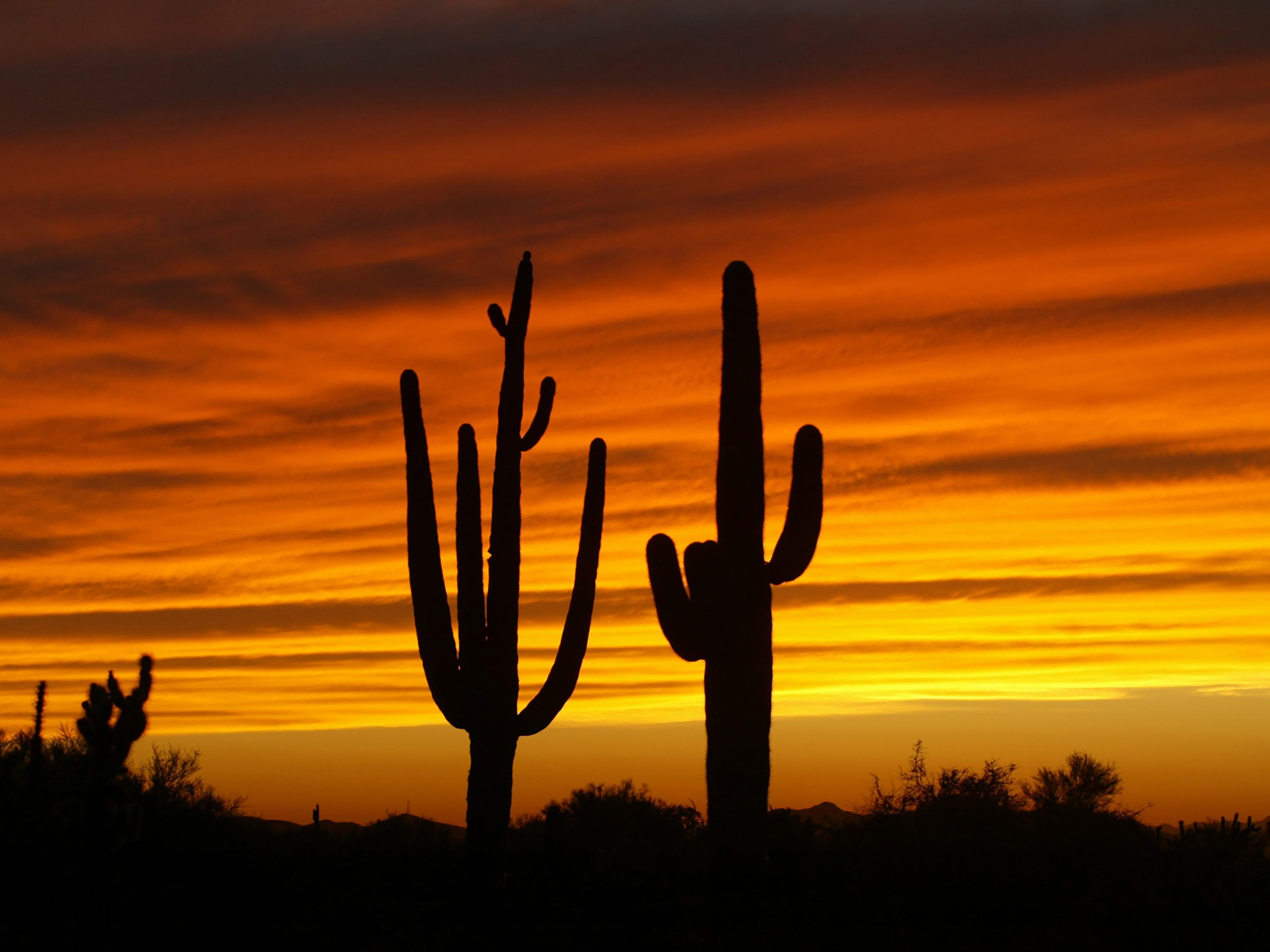 A colorful sunset graces the desert sky near Cave Creek.