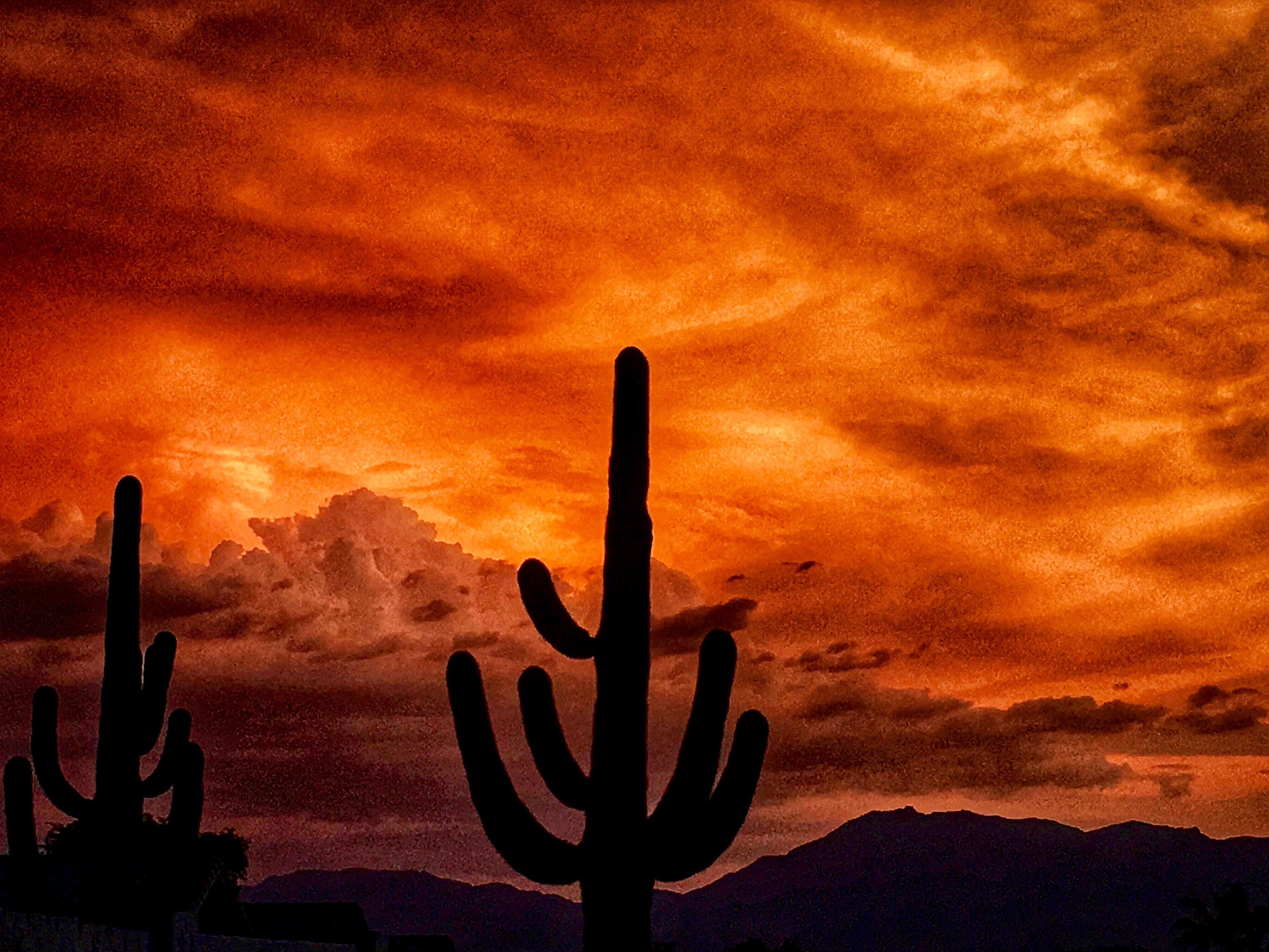 Arizona has spectacular sunset after a monsoon.