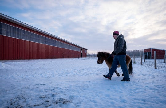 """Tammie Miller leads Louie, a 16-year-old miniature horse from the pasture into the barn at her rescue farm in Emmett. Louie began going blind when he was seven after forming cataracts in his eyes. """"Louie does really good,"""" Miller said about his ability to adapt to any pasture. """"He's always with some buddies."""""""