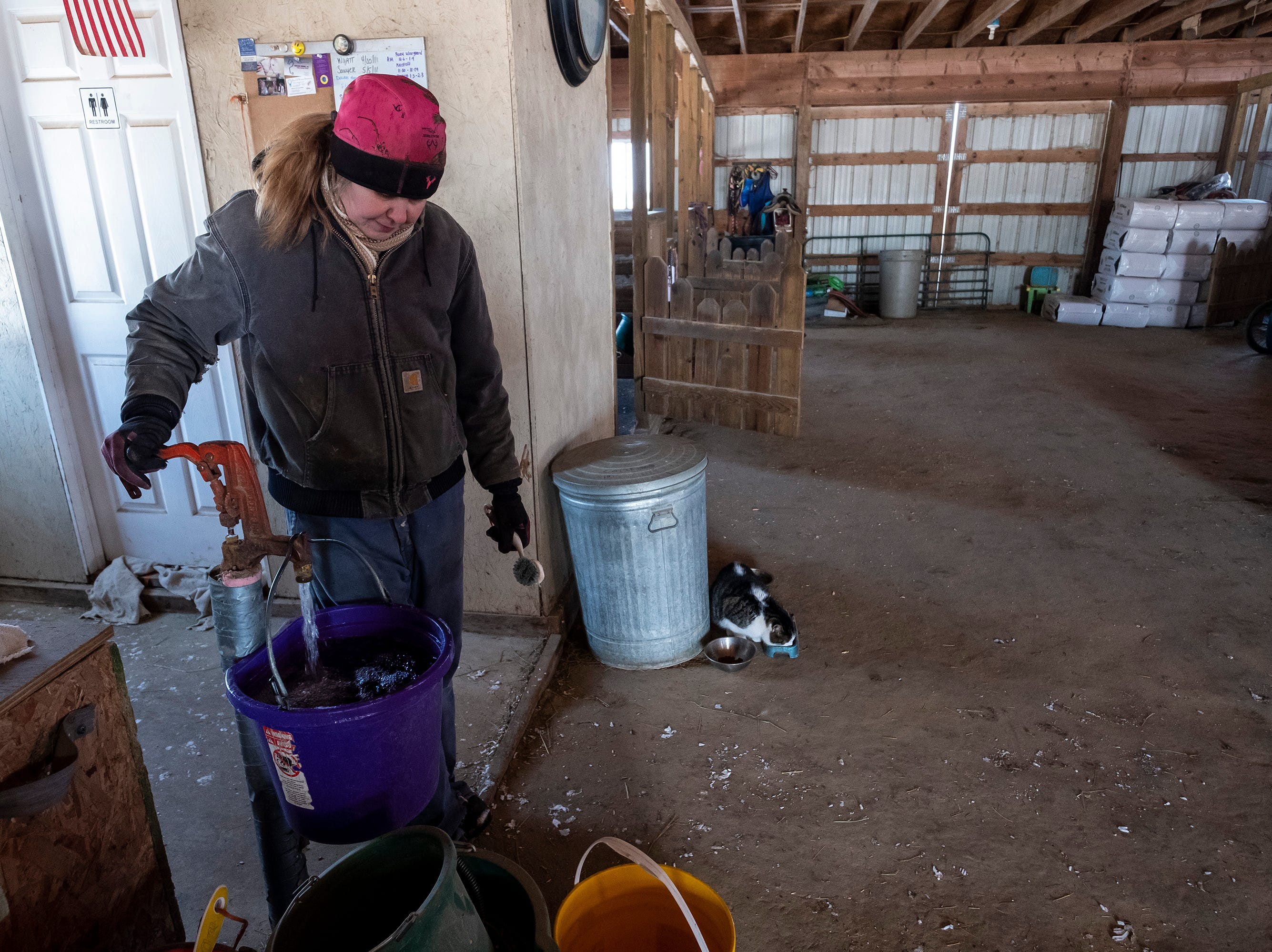 After the equine dentists have left, Tammie Miller returns to the farm's daily chores. On an average day, Miller said the morning chores will take about three hours, while the nightly chores usually take less than an hour and a half. In the warmer months of the year she'll spend more time in the barn with the animals.