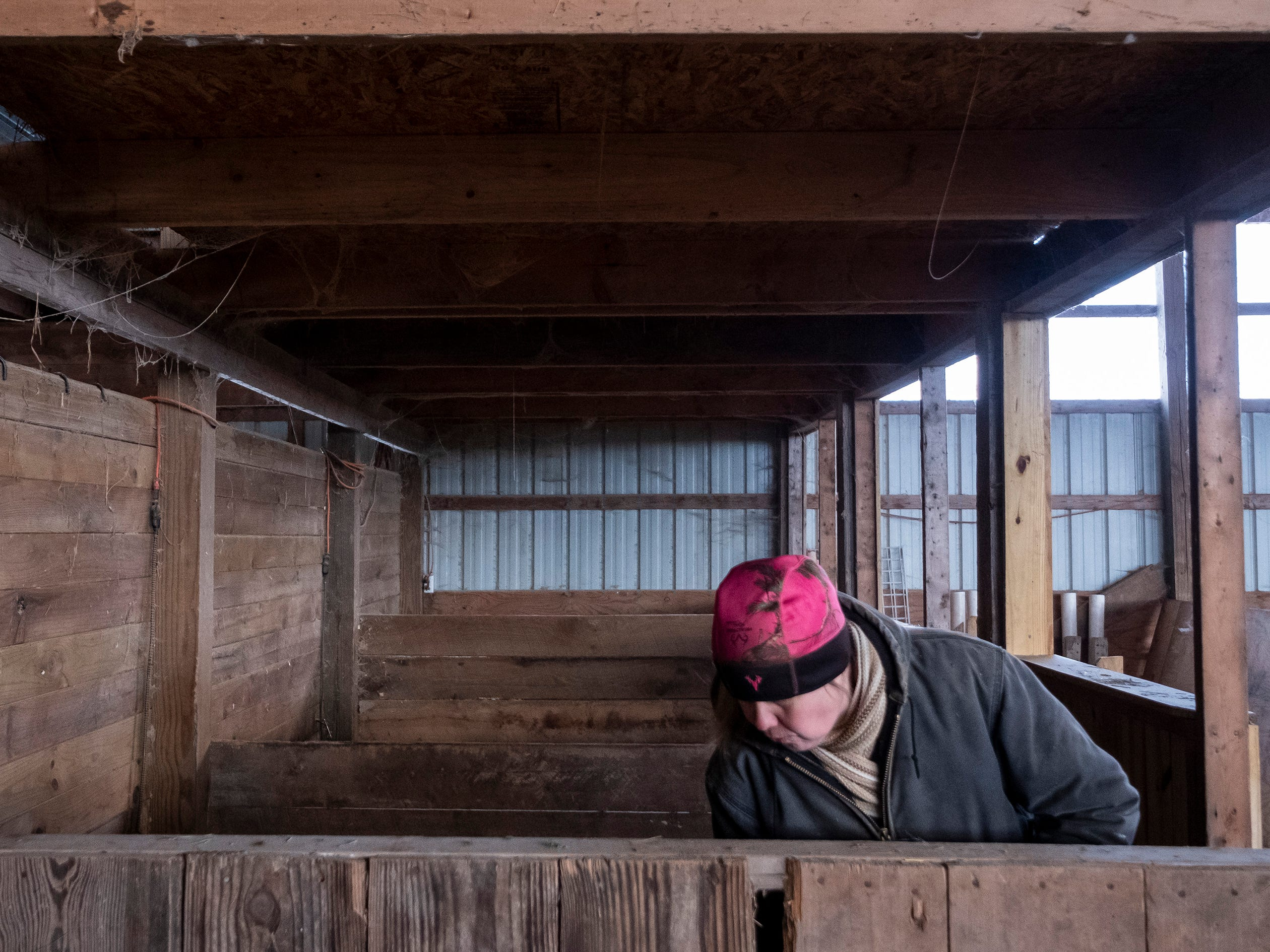"Tammie Miller cleans a row of stalls inside her barn Thursday, March 7, 2019. Miller said cleaning stalls is one of her favorite activities. ""It's relaxing time... Kind of therapeutic."""