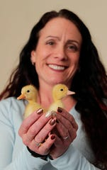 Kelly Brotz holds Pip, left and Squeak, right, Wednesday, March 6, 2019, in Sheboygan, Wis. Brotz said the pair were hatched from one egg shell.