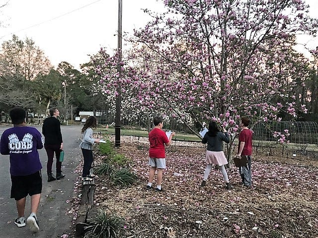 4-H youth getting inspiration from the Japanese magnolia tree during their 4-H Poetry Workshop.