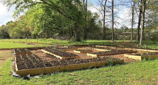 Get creative with your raised bed vegetable garden design.