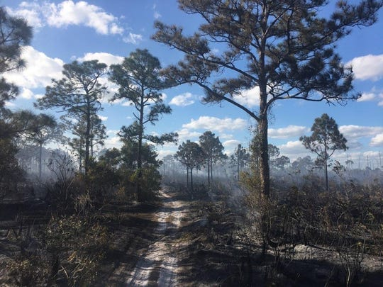 A wildfire threatened a school in Indiantown Thursday afternoon, March 7, 2019. Nobody was hurt as a result of the fire.
