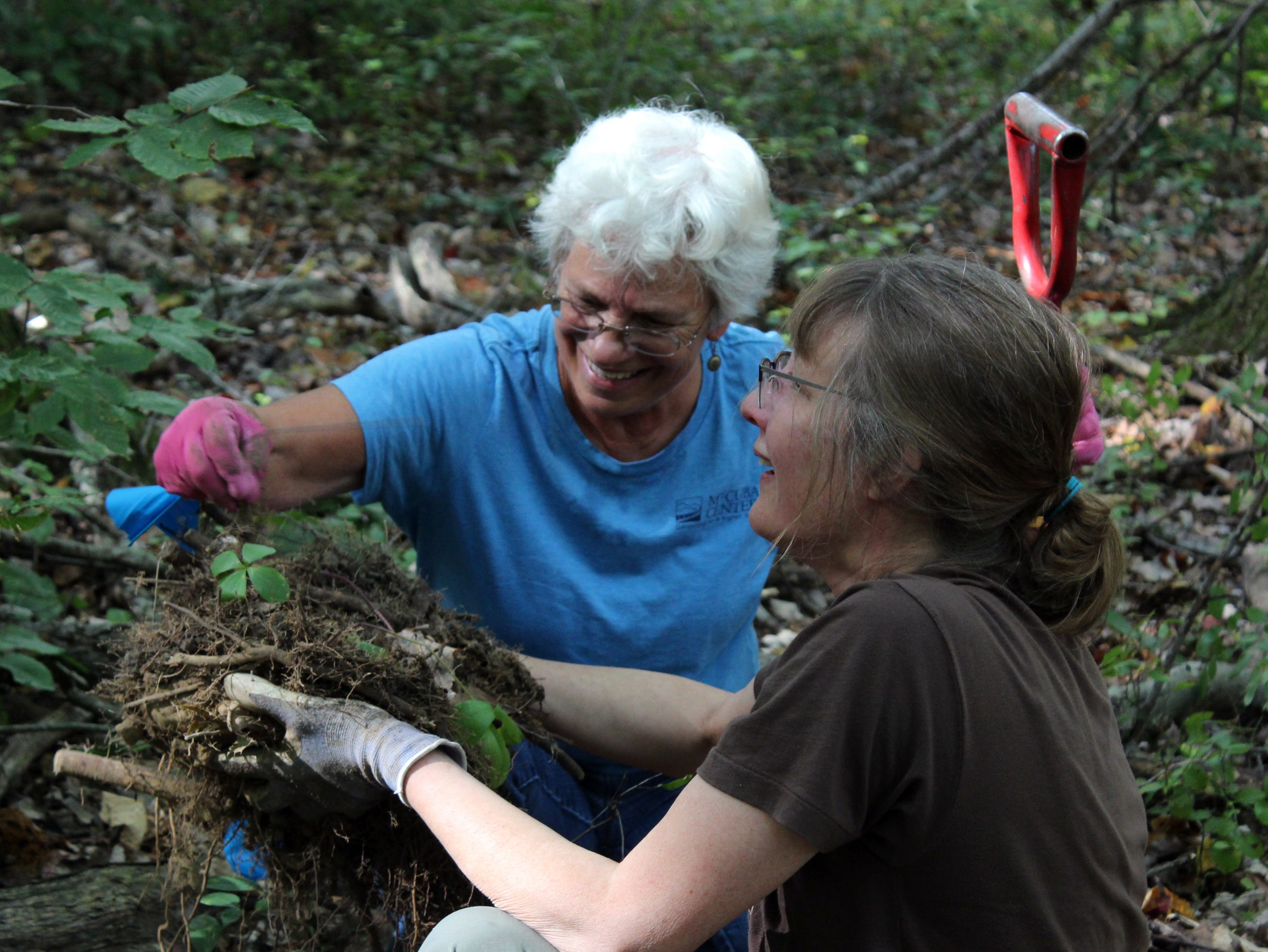 Orchid scouts Lynn Cherry and Joan Giannini Isover have an adventure documenting Delaware's native orchids.