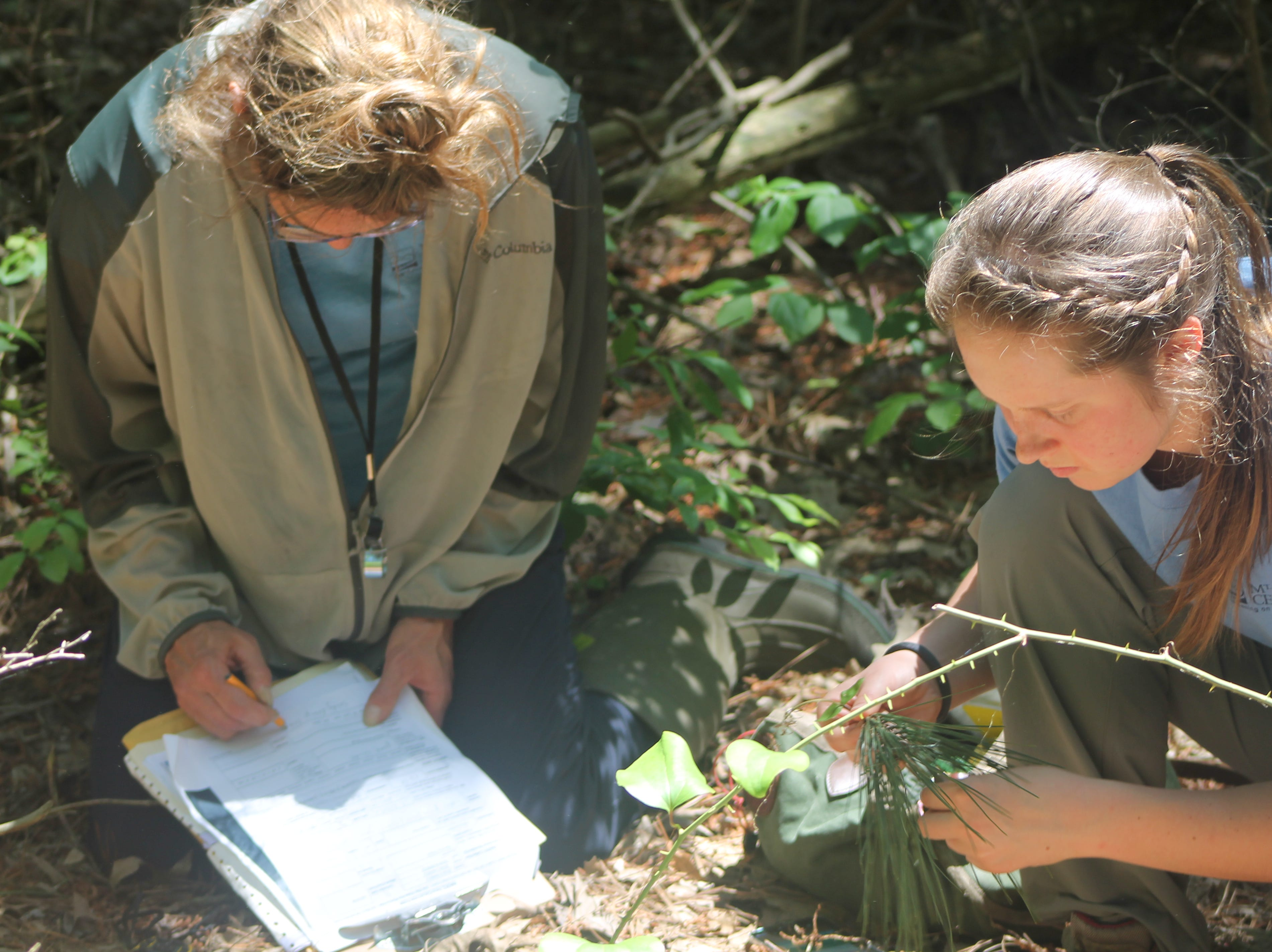 Adrienne Bozic, left, and Heather Titanich collect orchid data.